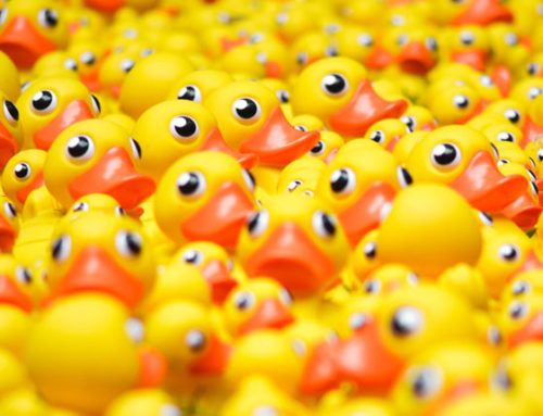 Rubber Ducks – Why They Matter